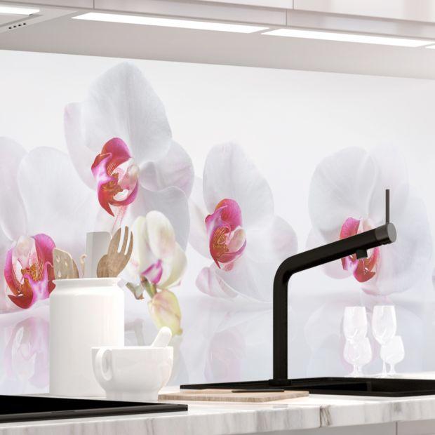 Küchenrückwand - ORCHIDEEN ENSEMBLE