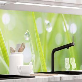 Küchenrückwand - MODERN GRASS